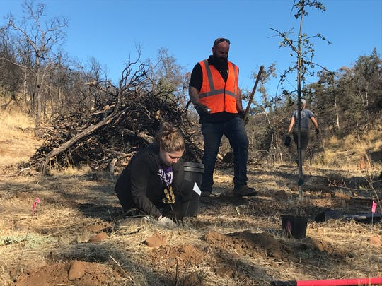 Ashley Johnson puts a shrub in the ground as Robert Balke looks on during the Community Creek Cleanup on Saturday, Oct. 5, 2019.