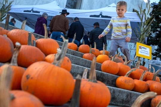 Hudson Lederer, 4, of Salem, carefully selects a pumpkin to take home during Oregon Bounty, an event to bring a taste of Oregon farms to the Oregon State Capitol, Oct. 5, 2019.