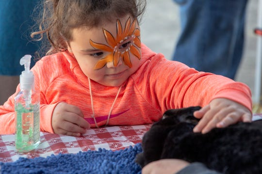 Cali Diederichs, 5, of Salem, carefully strokes a bunny at a petting zoo during Oregon Bounty, an event to bring a taste of Oregon farms to the Oregon State Capitol, Oct. 5, 2019.