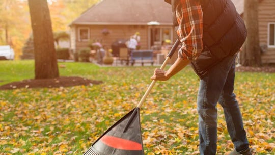 Raking leaves again this fall? Stop right now