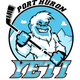 Local roller hockey team hires general manager with Port Huron ties