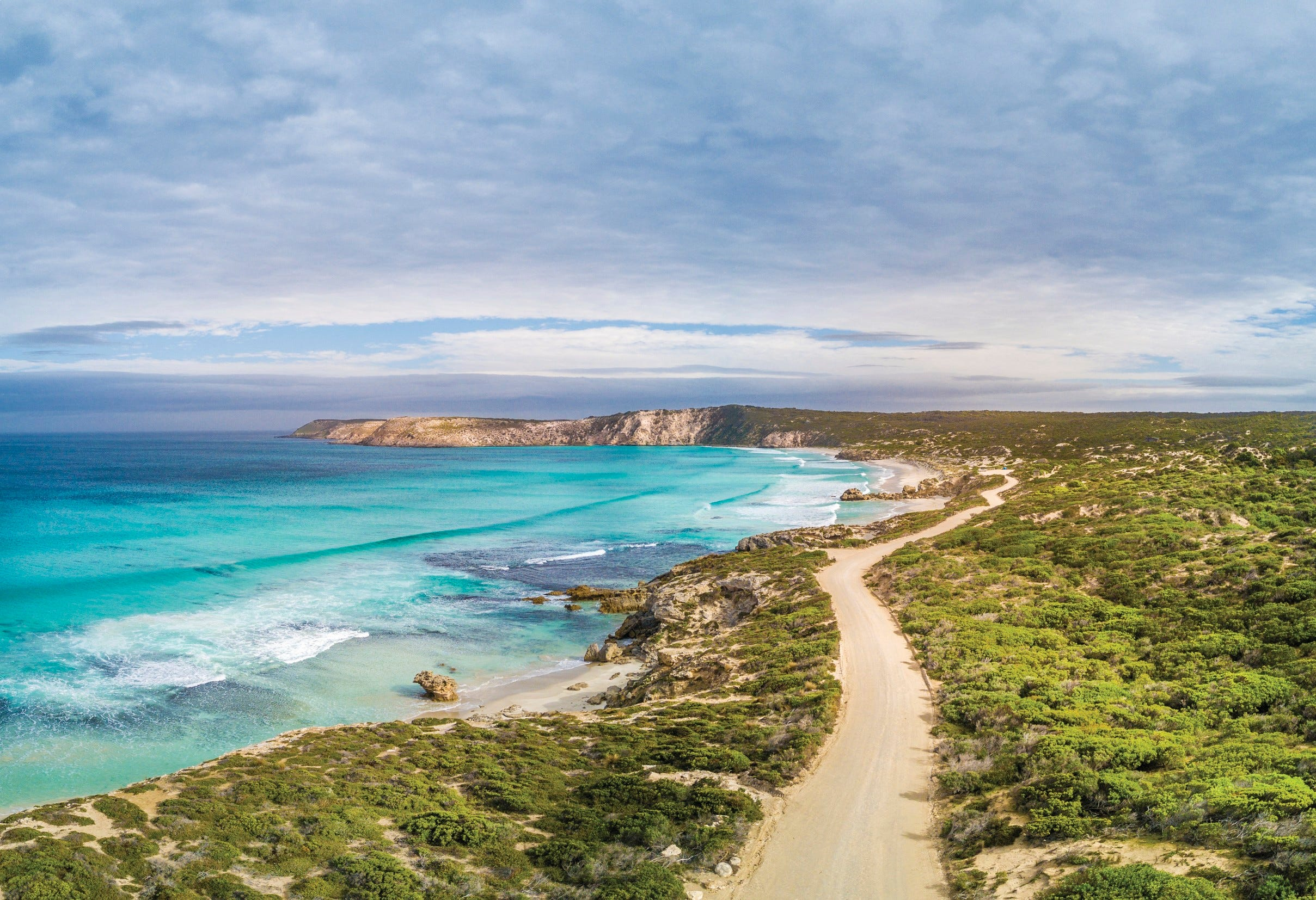 Where kangaroos outnumber residents (by a lot): Kangaroo Island rivals Galapagos with wildlife