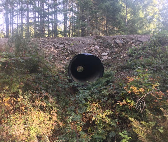 A culvert under Wicks Lake Road is to be replaced in the summer of 2019 to improve fish passage