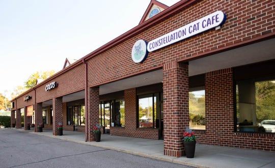 Constellation Cat Cafe on Lake Lansing Road in East Lansing.