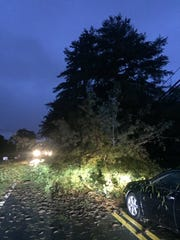 Franklin police say a downed tree and power line has closed Lewisburg Pike between Mach Hatcher and Carriage Park, Monday October 7, 2019