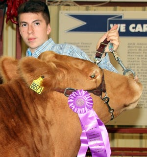 Marc Dominguez sold his 1217-pound grand champion steer to Smith Ford for $4,300.