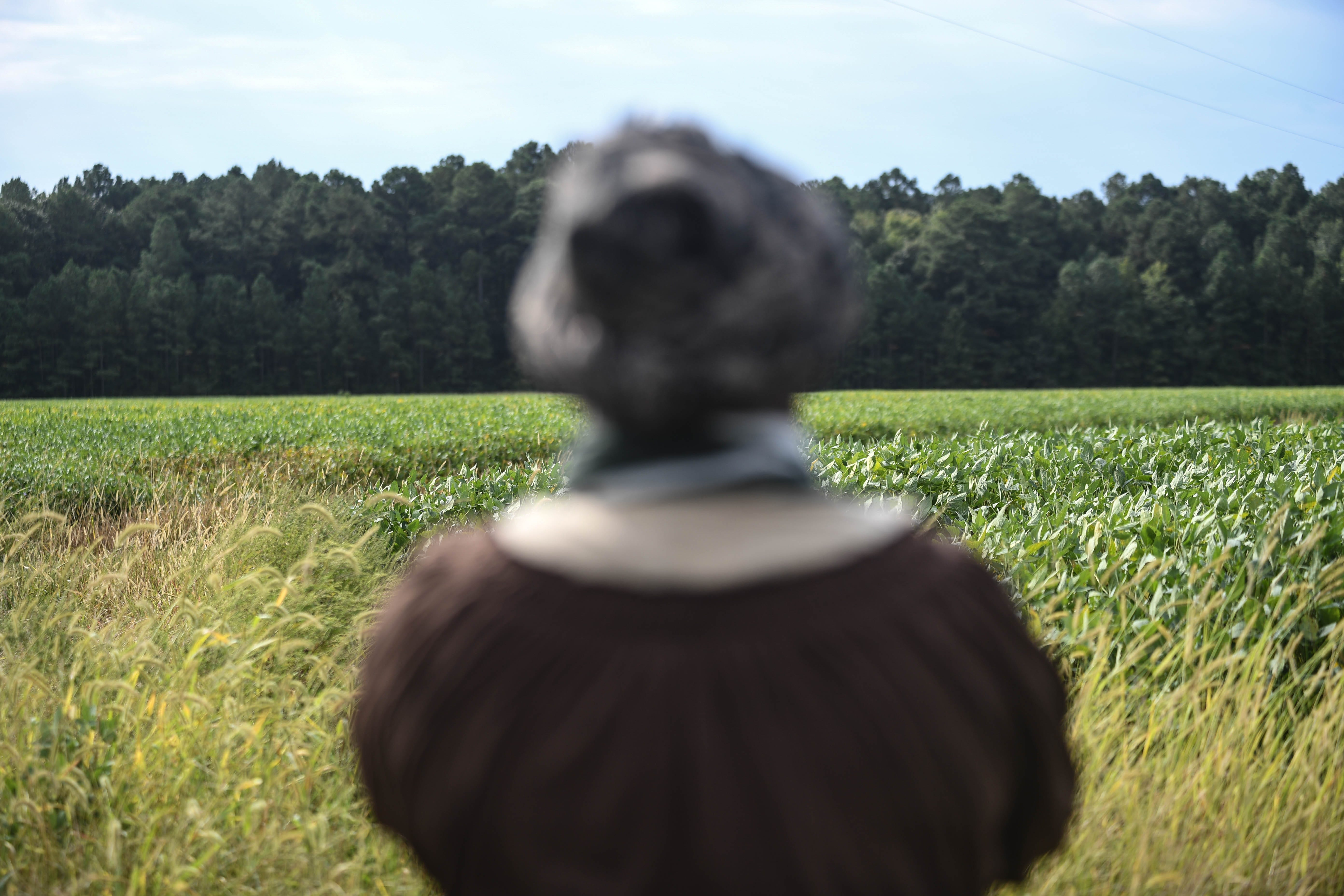 In the 1820s, Harriet Tubman lived her young life on Brodess Farm. Here, reenactor Yolanda Parker stands on the edge of a field. Brodess Farm can still be seen from Greenbrier Road in Cambridge, Maryland.