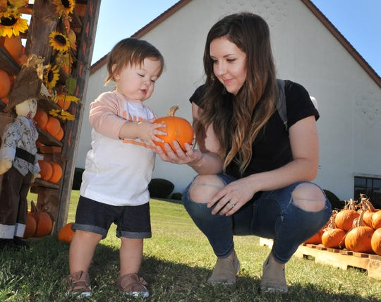 14-month-old Leah Enlow and her mother, Danielle pick pumpkins from the Pumpkin Patch located at the University United Methodist Church located on Taft Blvd. Monday afternoon. 
