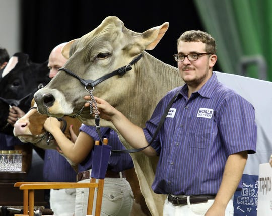 Kyle Barton smiles as Supreme Champion Cutting Edge T Delilah waits for photos after the selection of the 2019 supreme champions at the World Dairy Expo on Oct. 5 in Madison.