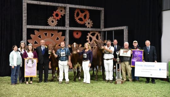 2017 Grand Champion, Eichlers Md Blanche-ET, owned by Peter Vail & Hillpoint Partners of Englewood, Fla., returned to the colored shavings to be named Senior and Grand Champion of the 2019 International Milking Shorthorn Show at World Dairy Expo on October 2.  Reserve Senior and Reserve Grand Champion titles were presented to Trilow Zeus Lala-ET, owned by Triston & Willow Upchurch and Susan Lee of Oxford, Wis.