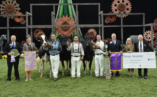 Butz-Butler Gold Barbara, exhibited by Kueffner, Iager, Hetts, Beilke and Armbrust of Boonsboro, Md., was named the Grand Champion of the 2019 International Holstein Show on, October 5. Claiming Reserve Grand Champion honors was winning Five-Year-Old Cow and Reserve Senior Champion, Oakfield GC Darby-ET, owned by Trent Valley, J. Mell, T and L Cattle, F and D Borba and F and C Borba of Peterborough, Ontario, Canada.