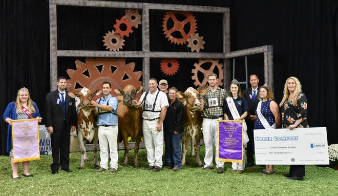 De La Plaine Bingo Stinger of Bridport, Vt. took home the Senior and Grand Champion titles during the International Ayrshire Show on  October 1. Stinger, shown by Blue-Spruce Farm. The Reserve Senior and Reserve Grand Champion was Marilie Gentleman Karmina, shown by Peter Vail and Mike and Linda Hellenbrand of Lomira, Wis.