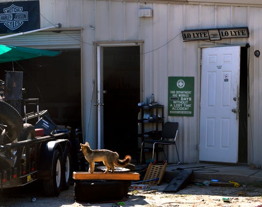 A broken door leans onto its frame near a mounted fox Tuesday at a business on Texas Avenue, where police witnessed a drive-by shooting Monday evening. A man was shot multiple times but later released from the hospital. The shooter remains at large.