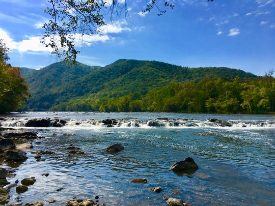 Immersion in seasons and streams (French Broad River)