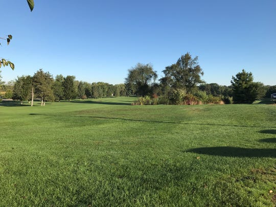 Alwyn Downs Golf Club is part of the proposed South Neighborhood Improvement Authority tax district in Marshall. City Manager Thomas Tarkiewicz said that the NIA could help development in the area now that the golf course has been sold.