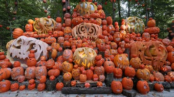 How's this for pumpkin carving? Tuesday marked the first night of the Jack O' Lantern Spectacular in Iroquois Park.