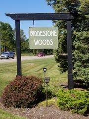 Biddestone Woods.