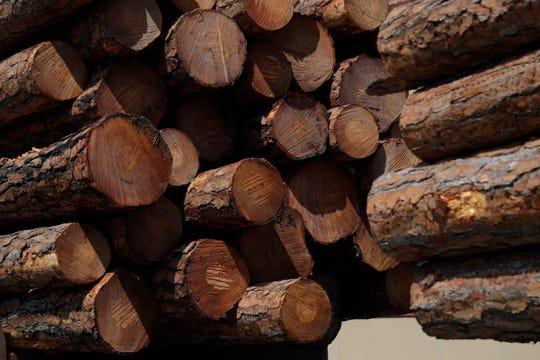 A semi pulls a load of timber through downtown Blountstown Thursday, Oct. 3, 2019.