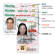 REAL ID: You have less than a year to get your upgraded Florida driver's license, required to fly within the United States