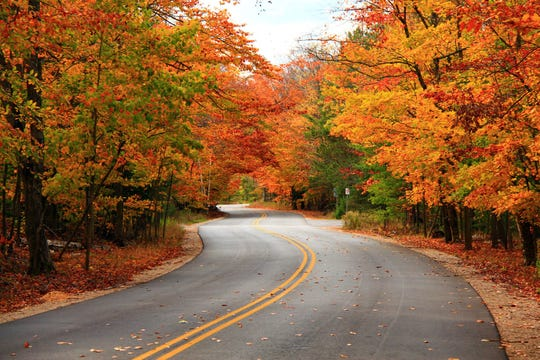 Fall colors are on full display along a road through Whitefish Dunes State Park. An AARP Travel Center survey recognized Door County as one of the top 12 fall vacation destinations for seniors in the U.S.