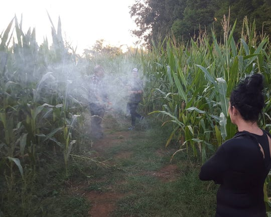 The thick cornfield makes for a great haunted backdrop at Screamville off Tazewell Pike.