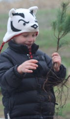 Fourth-graders in Wisconsin can receive free trees to plant from the DNR.
