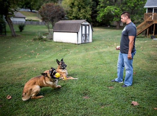 Newark K9 officer Dave Burris continues the training of current police dog Hugo and former dog, Ike at home by using commands in play at home. The dogs need constant training to keep them sharp and to help them use their energy.