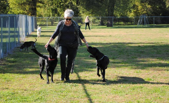 King said spending time with her dogs at the William Grace Dog Park is a cherished part of her mornings.