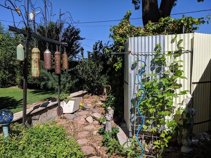 Peterson's backyard includes mint bushes, an artistic wind chime and a snail-shaped outdoor shower.