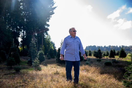 Bob Palmer walks through one of his remaining fields of Christmas trees at Palmer's Christmas Tree Farm in Salem, Oct. 9, 2019. After 51 years of business, Palmer's will no longer be open for U-cut business.