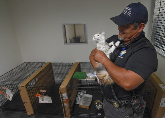"Richard Pellat, Animal Control Officer for the city of Fort Pierce, holds the only kitten in the cat room of the new temporary animal shelter at the Treasure Coast International Airport and Business Park during an open house for media on Wednesday, Oct. 9, 2019, in St. Lucie County. ""Our objective is to make sure that the animals have an environment that we can have safe and secure, and that the needs of the animals are being met,"" said Jeff Bremer, Deputy County Administrator of St. Lucie County. ""That's our forethought that's driven our entire operation towards this temporary shelter."""