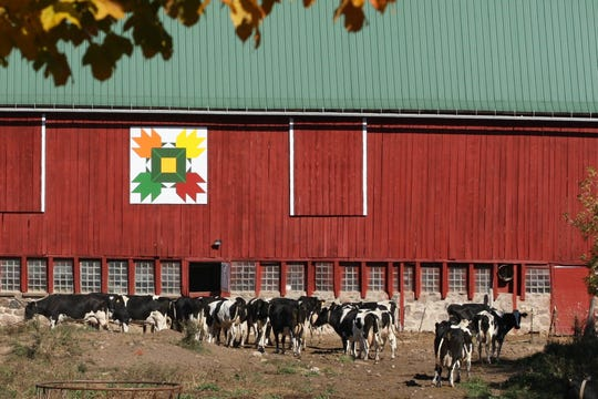 "This barn quilt, titled ""Autumn Leaves,"" is displayed on a 100 year old barn at the Egdorf farm on Grant Road in Shawano County."