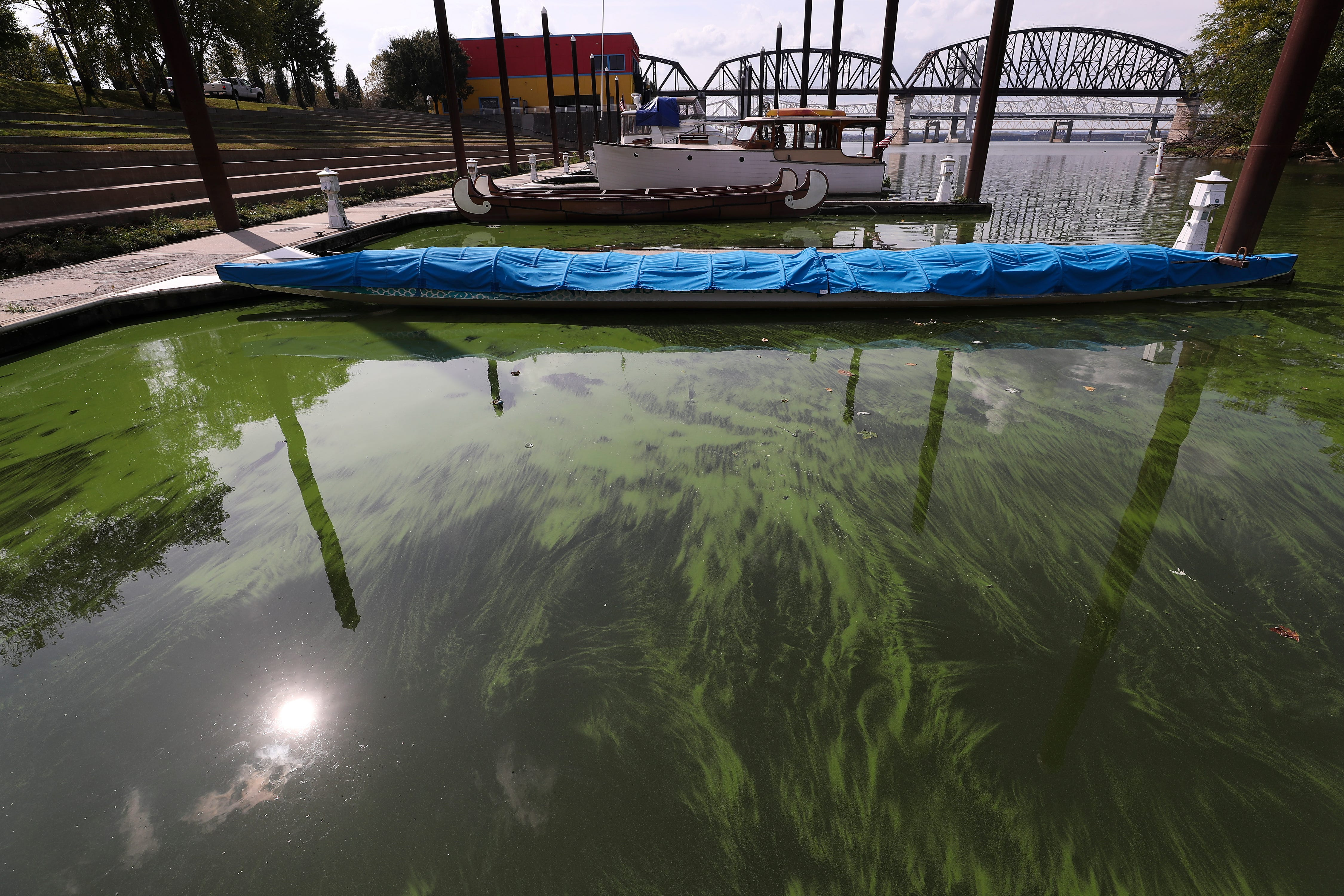 Algae on the Ohio River may force Ironman to cancel the swimming portion
