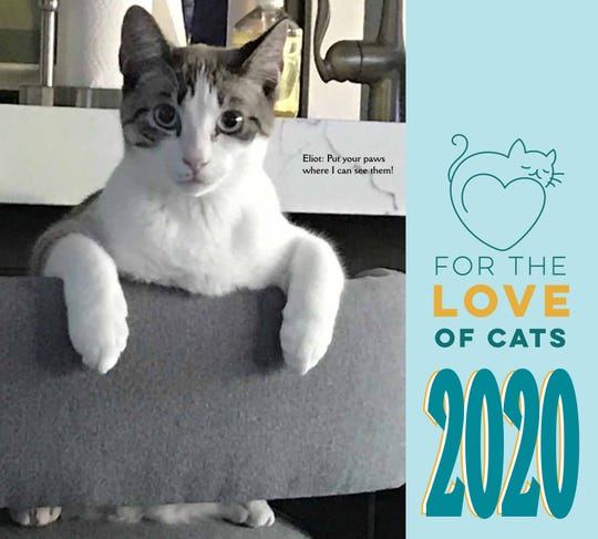 For the Love of Cats calendar.