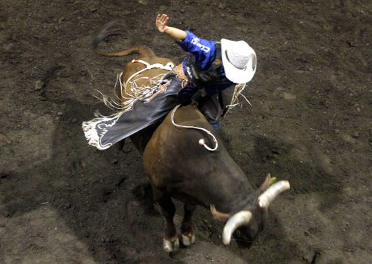 Joseph McConnel rides a bull named Flirting With Disaster, Friday, June 28, 2013, during the Four Corners Ryan McConnel Invitational at McGee Park Coliseum in Farmington.