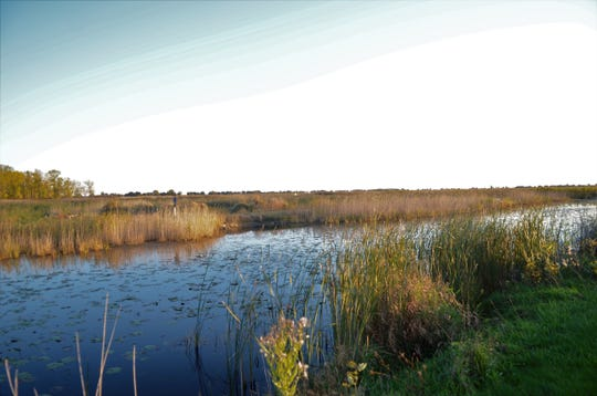 The Michigan Department of Natural Resources held an open house at the St. Clair Flats State Wildlife Area on Harsens Island on Oct. 9, 2019.
