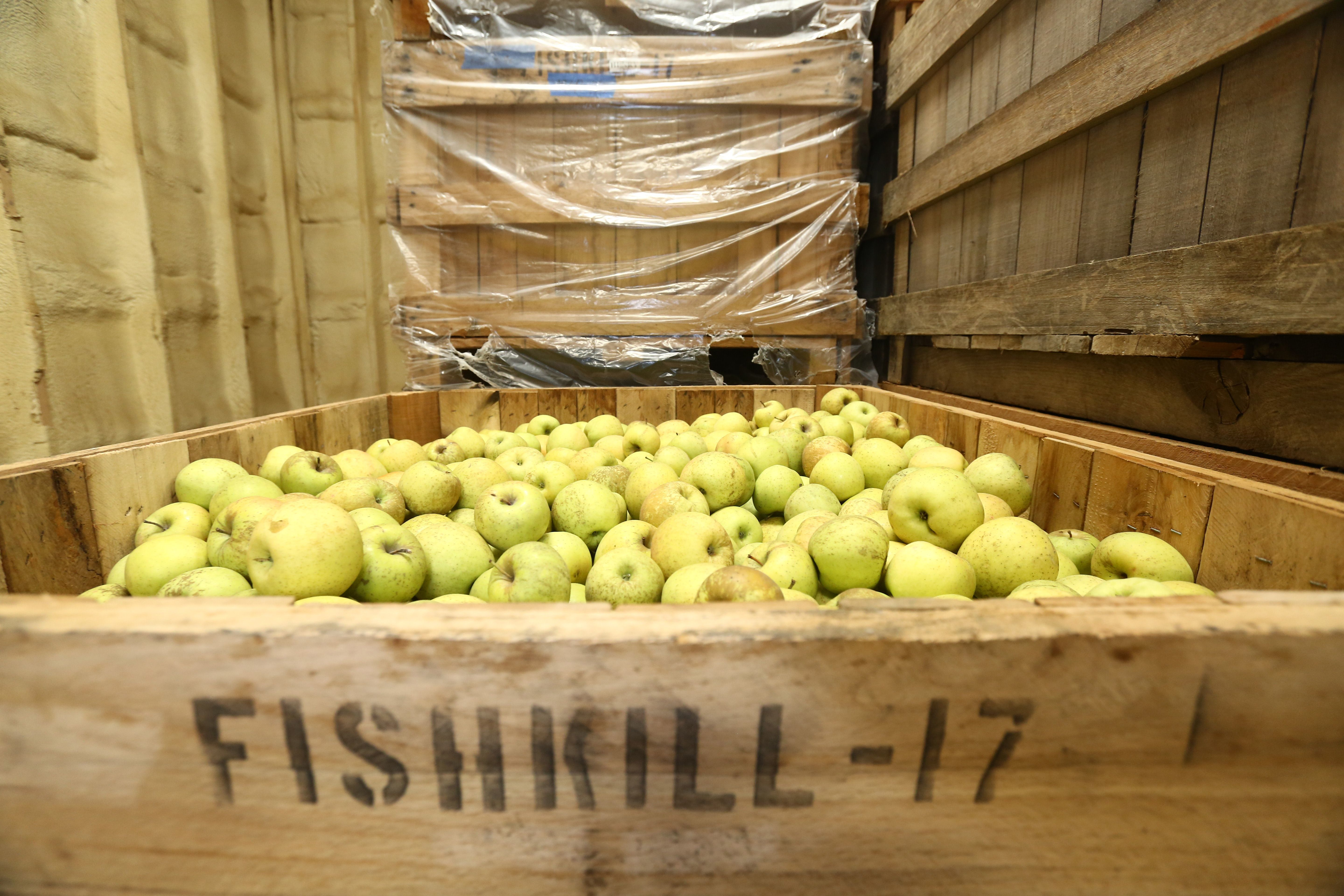 A bin of apples in cold storage is shown at Fishkill Farms on Thursday, February 8, 2018.