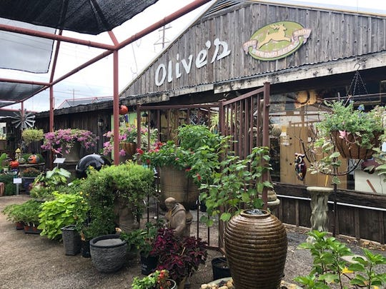 Olive's Nursery is located at 3402 Sherwood Way in San Angelo.
