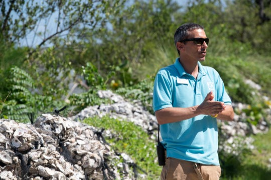 "Zack Jud, director of education and exhibits at Florida Oceanographic Society in Stuart, says seagrass is ""one of the foundations of a healthy lagoon."" In Martin County, seagrass in the Indian River Lagoon has been suffering since Lake Okeechobee discharges in 2013 sent massive loads of fresh water and nutrients into the estuary."