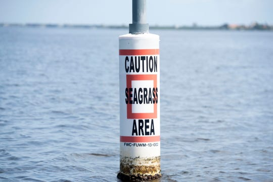 A group of 24 tethered buoys, encircling 440 acres of the Indian River Lagoon off the Oslo Road boat ramp and the Moorings Flats in Indian River County, warns boaters to keep off shallow seagrass beds. The protected area, funded by a project called the Rotary Initiative for Submerged Seagrass Awareness, has helped this section of the lagoon grow some of the healthiest seagrass around.