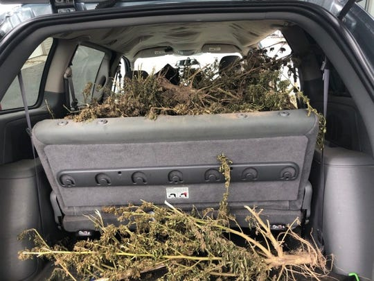 Dover police found more than 130 pounds of marijuana in a stolen van.