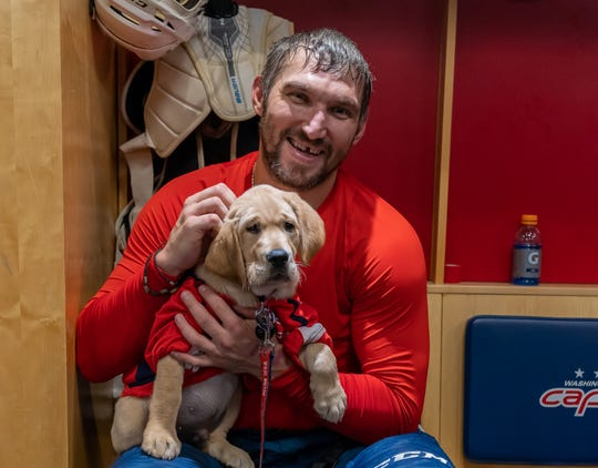 Alex Ovechkin sits with the Capitals' new dog, Captain.