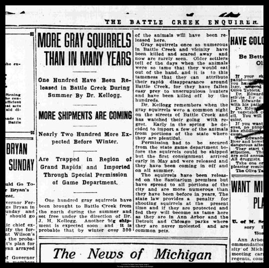 A Nov. 12, 1915 edition of the Battle Creek Enquirer with an article about gray squirrels being released in the city at the direction of Dr. John Harvey Kellogg.