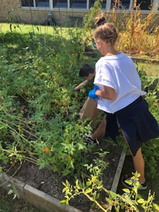 Students work in the outdoor teaching garden at Benjamin Franklin Elementary School. The school received additional funding from the American Heart Association to expand the project with tower gardens.