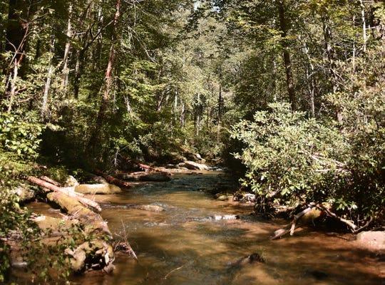 A view of Eastatoe Creek at the Eastatoe Creek Heritage Preserve.