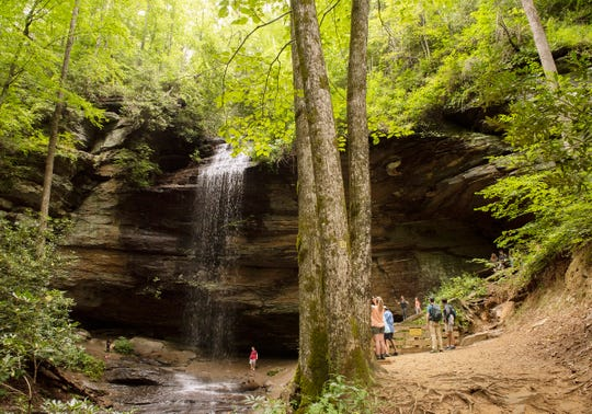 Moore Cove Falls in the Pisgah National Forest Ranger District