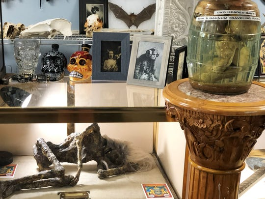 Display cases and shelves are filled with skulls and other artifacts, such as the two-headed baby from the 1920s Barnum Traveling Show.