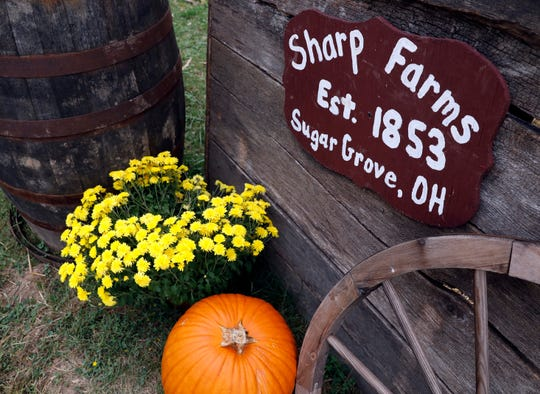 Sharp Farms near Sugar Grove began in 1853. For about 20 years the farm has been selling pumpkins every fall.