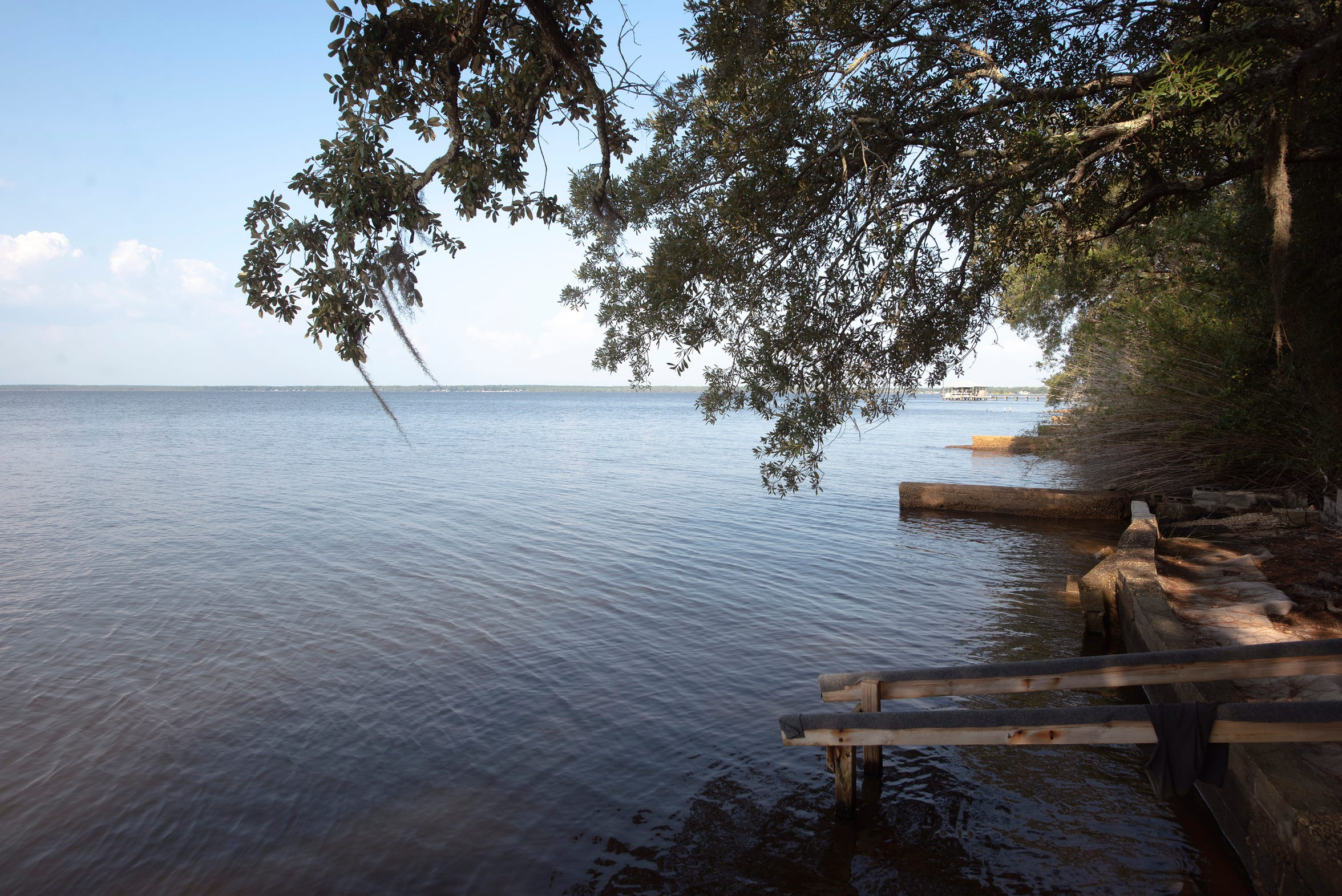 The calm and tranquil waters off Perdido Bay tested positive for high alkaline levels on Thursday, Oct. 3, 2019.