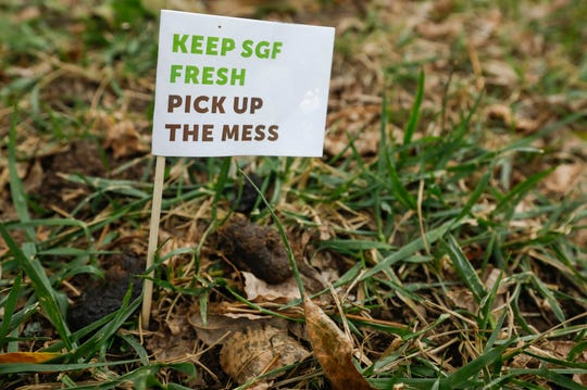 City employees have been marking dog poop on Park Central Square and Jubilee Park in an effort to raise awareness for pet owners to pick up after their pets.
